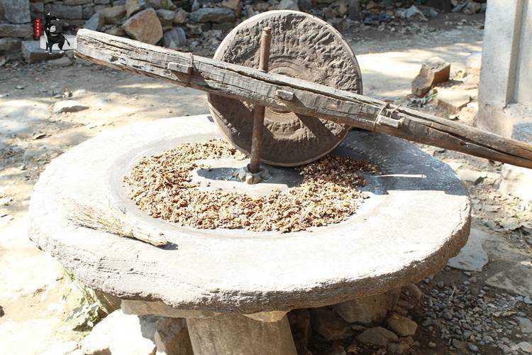 【沂蒙老磨坊第一团】自榨有机野生山核桃油3PVC木塑结皮发泡建筑模板图片