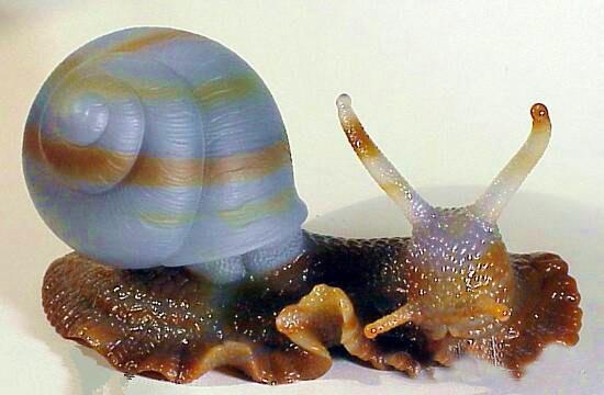 蜗牛玉雕图片_缘和田玉商城佩饰玉器和田玉挂件羊脂玉蜗牛