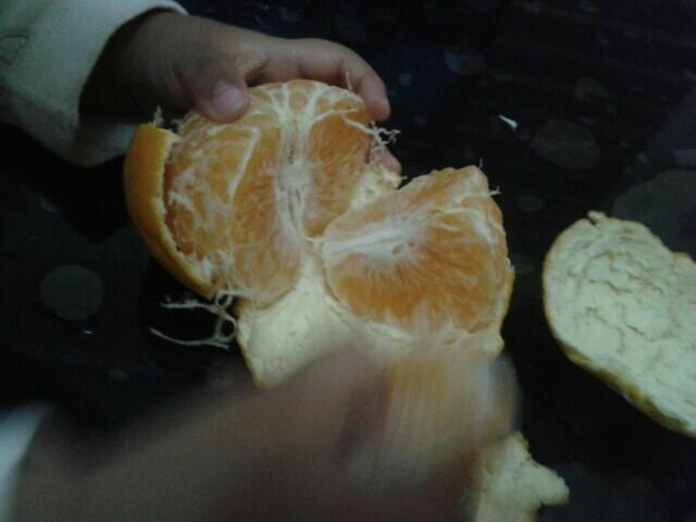 9.28孕妇:西葫鸡翅饼+土豆胡萝卜炖食谱配米饭食谱大全鸡蛋文库图片