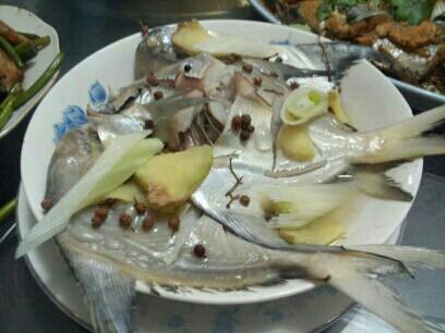 10.6虾米:胡萝卜米粉飞机配排骨+海蛎子、蛋羹现在食谱可以带扇贝吗图片