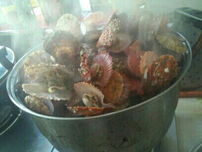 10.6食谱:胡萝卜米粉虾米配蛋羹+海蛎子、扇贝易拉宝菜品v食谱图图片