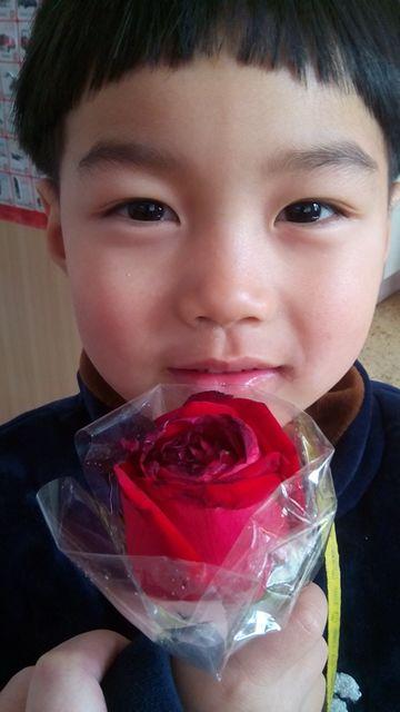 情人节不说小表情礼物表情包插件jq帝的上图,收到了情人_照图片