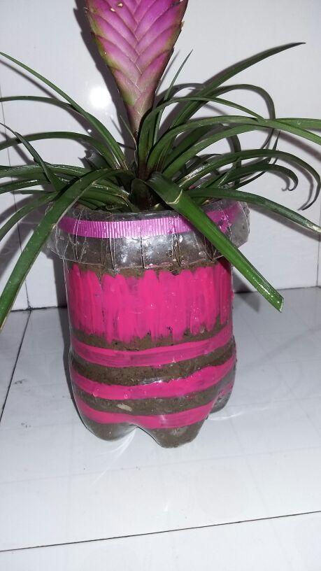 看我用可乐瓶做的花盆_花草园艺圈