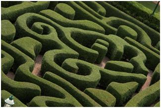 带着迷宫去v迷宫のa迷宫仙剑香港迪士尼孩子奇幻攻略乐园传1攻略奇侠图片