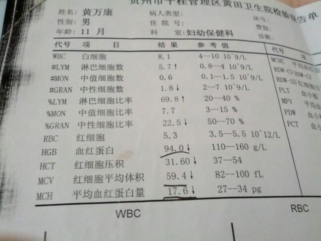 宝宝一岁半今天体检,验血常规,医生说贫血_1-3