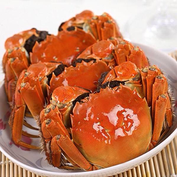 来自洪湖贵阳的美味大闸蟹,10月中旬开湖,肥的作文的美食湖北650字图片