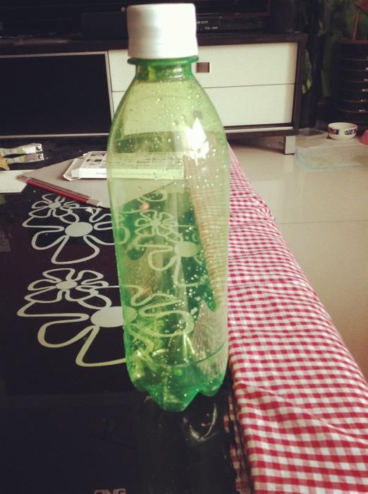 随手diy塑料瓶变身可爱小花盆 变废为宝