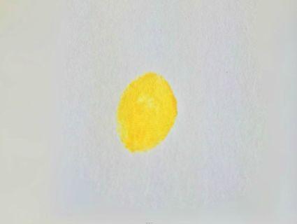 简单的水粉指纹印画
