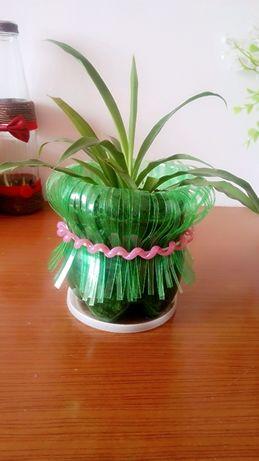 自制小花盆,环保又美观!