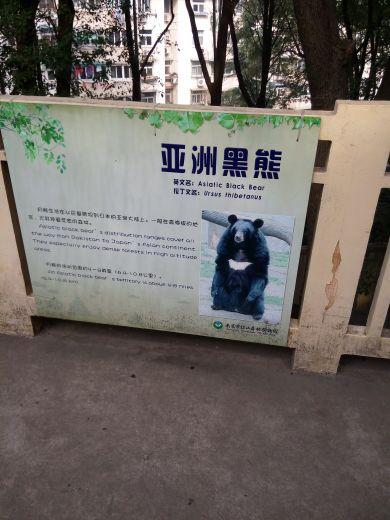 南京红山动物园_照片秀秀圈