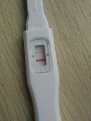 自己用验孕棒试明显双杠,去医院检查却显示阴性 大家帮摸看看怎么回图片