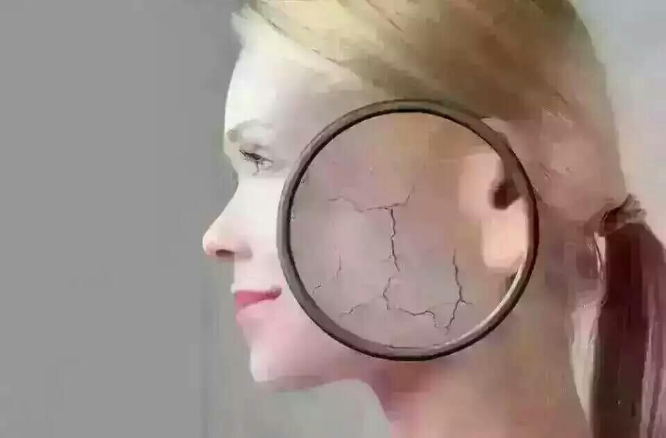 人的敏感是由于皮肤长期缺水而造 如果把这样的肌肤放在显微镜下,