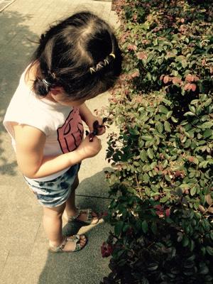 甜八婆说自己摘叶子贴画