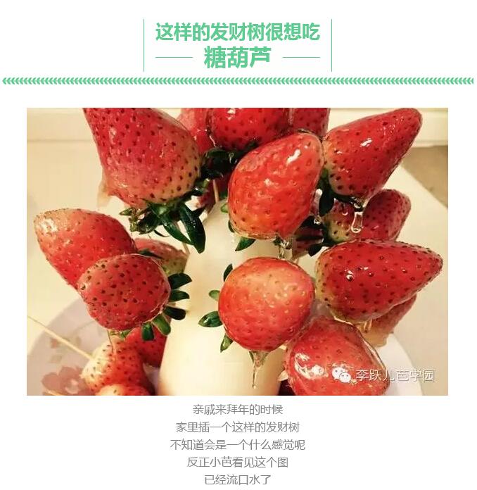 用水果做的造型