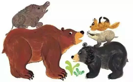 孩子们需要知道的动物趣事!