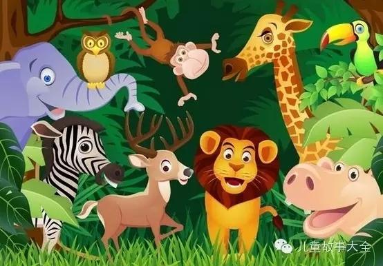 【睡前故事】森林动物聚会