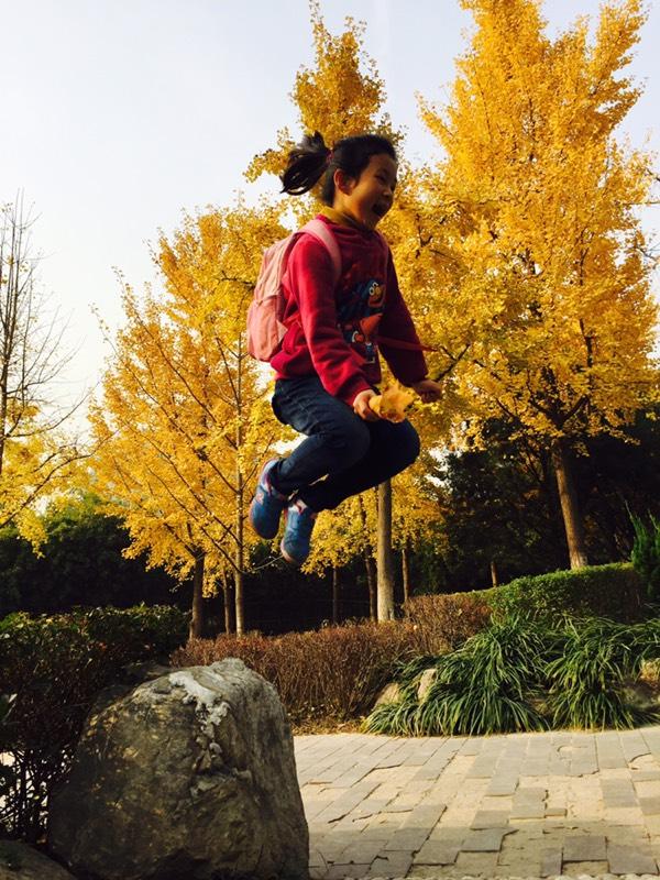 【漫舞飞扬】属于秋天的色彩----银杏叶