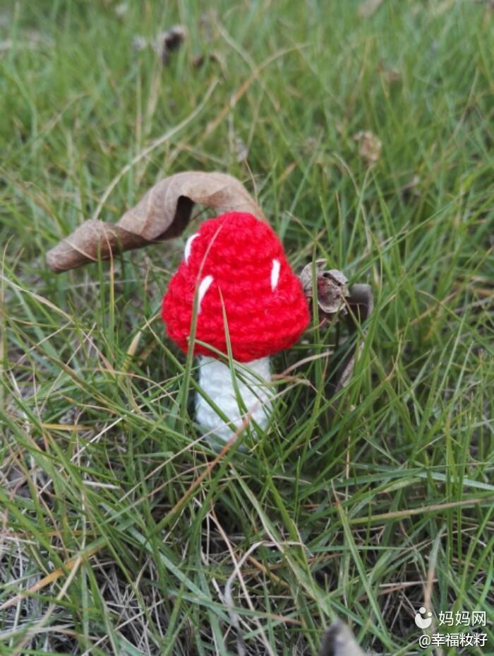 【圣诞一起嗨】钩针小物之圣诞红蘑菇