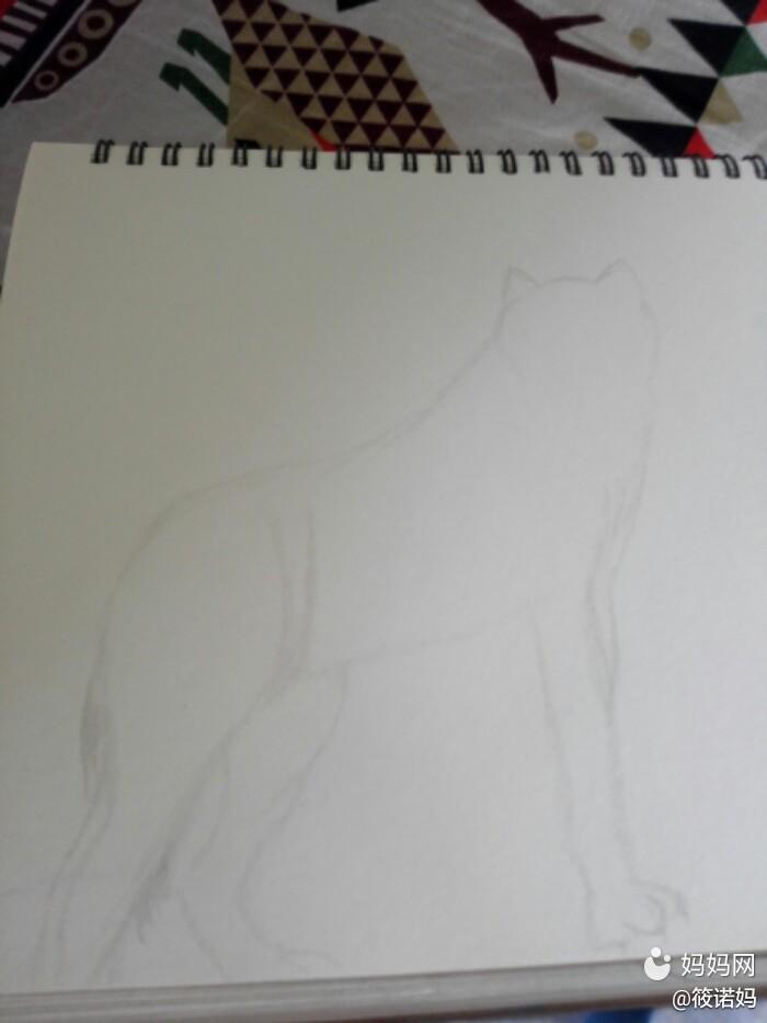 狼图腾手绘插画
