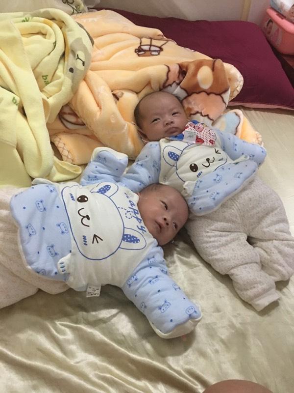 我的双胞胎男宝宝_生男生女圈