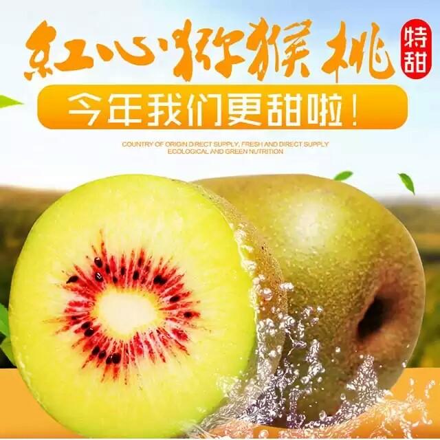 果园直供,维c水果之王,绿色健康食品——蒲江猕猴桃